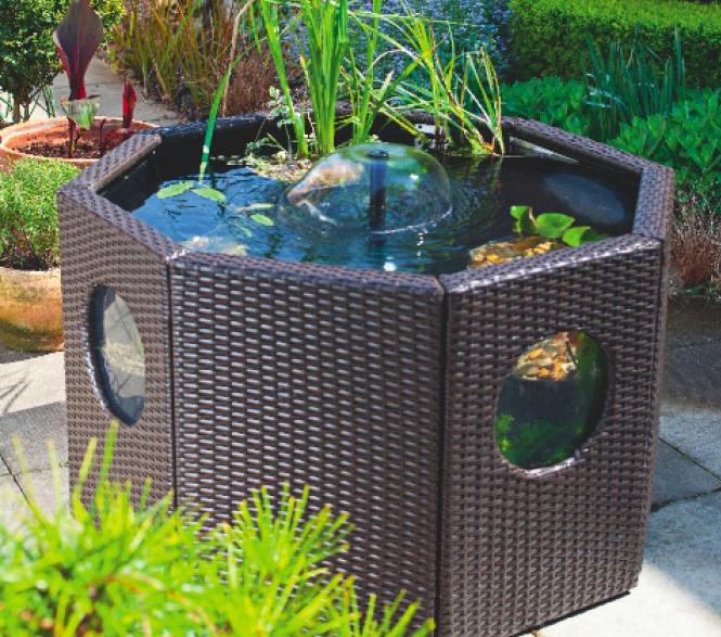 Above Ground Fish Ponds | Pool Design Ide