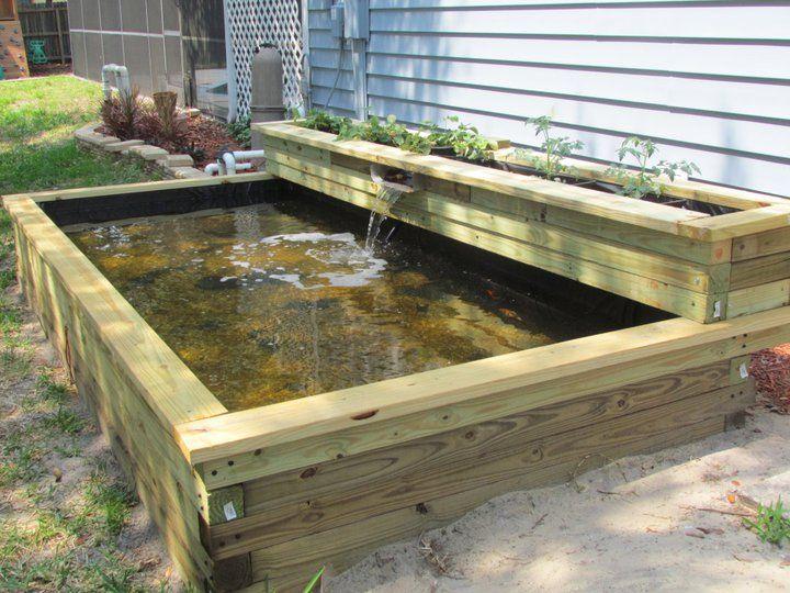 baby koi nursery - Ideas for on ground temporary pond | Ponds .