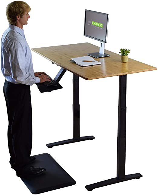 Amazon.com: Rise UP Dual Motor Bamboo Electric Standing Desk Small .