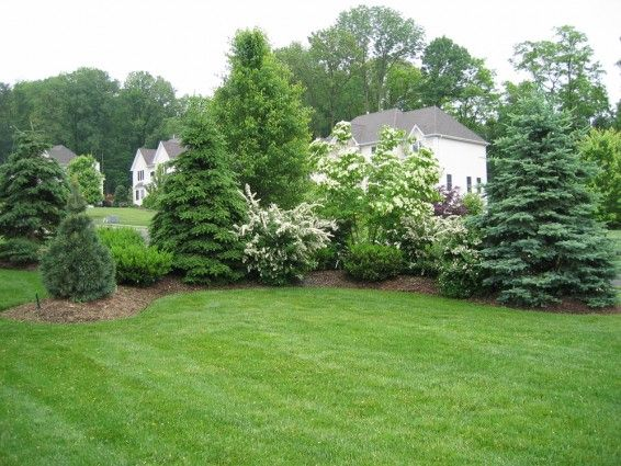Landscaping the New House | Evergreen landscape front yard .