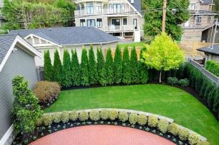 Privacy Landscaping Ideas Ideas, Pictures, Remodel and Decor .