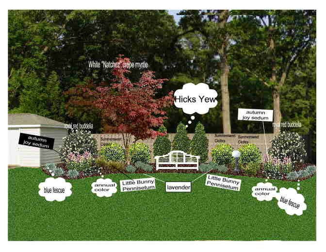 landscape for backyard against fence | Fence landscaping, Privacy .