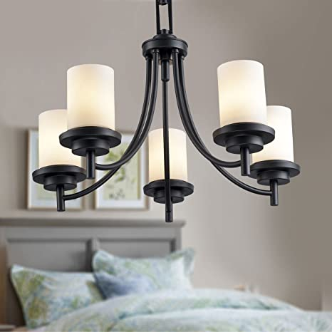 5-Light Black Wrought Iron Chandelier with Glass Shades (E-8110-5 .
