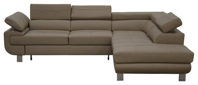 Contemporary Sectional Sleeper Sofa   Leather