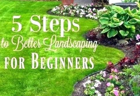 low maintenance landscaping ideas for front of house low .