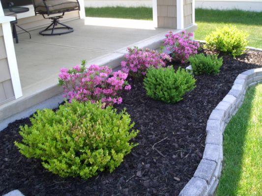 cheap landscaping ideas for front | Easy landscapi