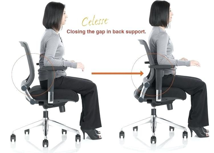 Make use of back support office chair | Best office chair .