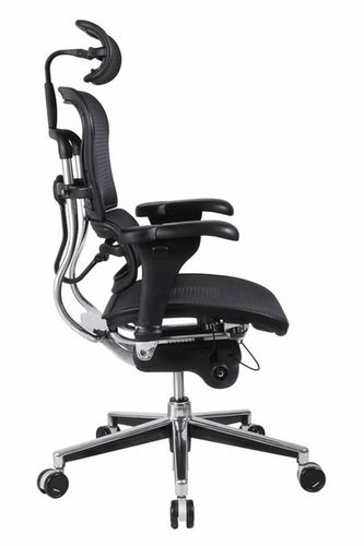 Ergonomic Office Chair with Lumbar Suppo