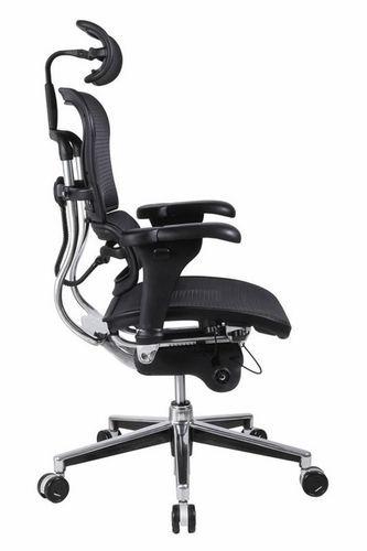 Ergonomic Chair With Lumbar Suppo