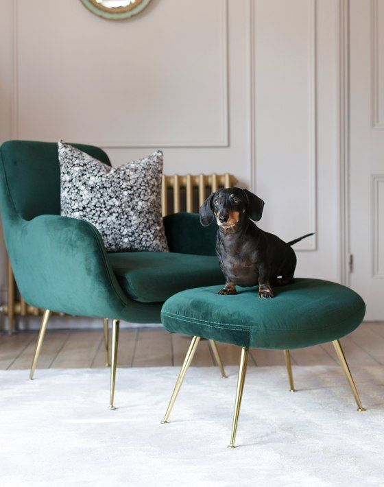 A light, bright room is dressed with a dark green velvet chair and .