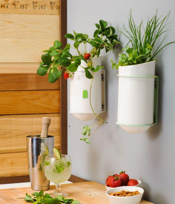 kitchen wall art ide