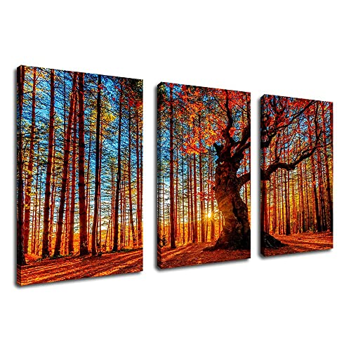 Living Room Decor Frame Sets: Amazon.c