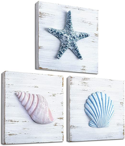 Amazon.com: TideAndTales Beach Theme Seashell Wall Decor (Set of 3 .