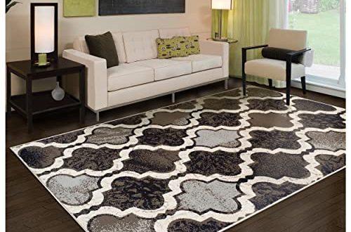 Huge Area Rugs for Living Room: Amazon.c