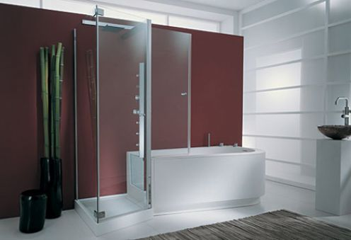 A Walk In Tub Shower Combo for Ease and Comfort - All My Home Nee