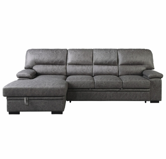 Michigan 2-Pc Dark Gray LAF Sectional with Pull-Out Bed by .