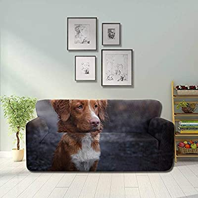 JOCHUAN Dog Nova Scotia Duck Tolling Retriever Sofa Cover Seat .